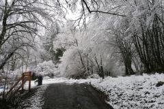 ninane-hiver2